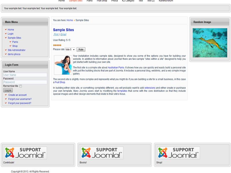 Joomla Template Features #15