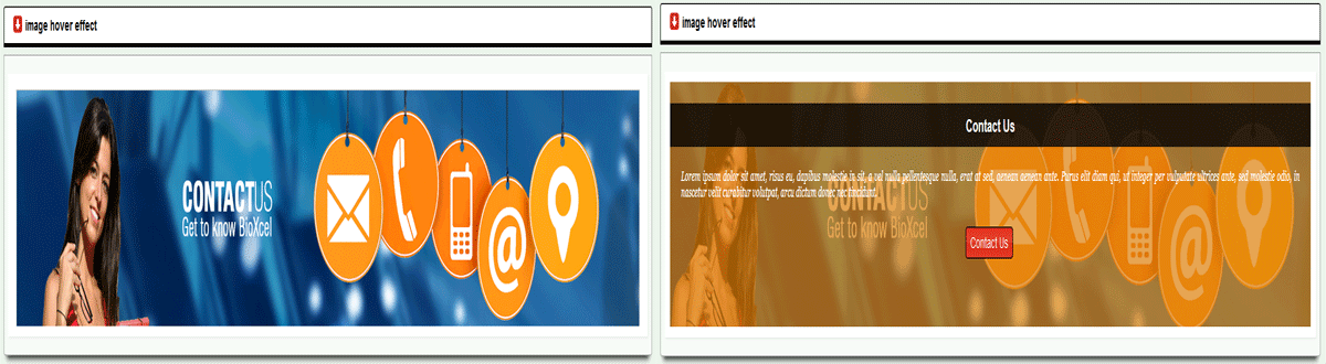joomla module image hover effect style 2.png
